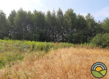 Działka budowlano-rolna Ściejowice 39ar