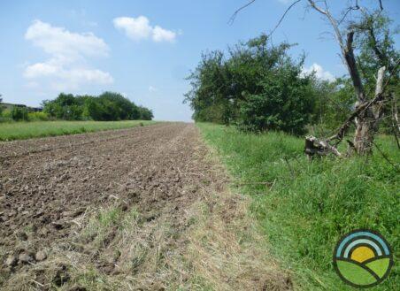 Działka budowlano-rolna Morawica 36ar