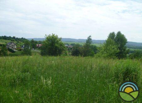 Działka budowlano-rolna Radwanowice 75ar